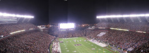 Williams Brice Wide